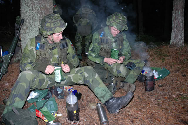 187 T Rex 2014 After Action Report The Swedish Army Trangia